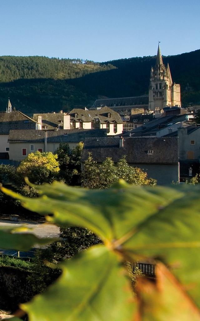 Vue panoramique du centre historique de Mende