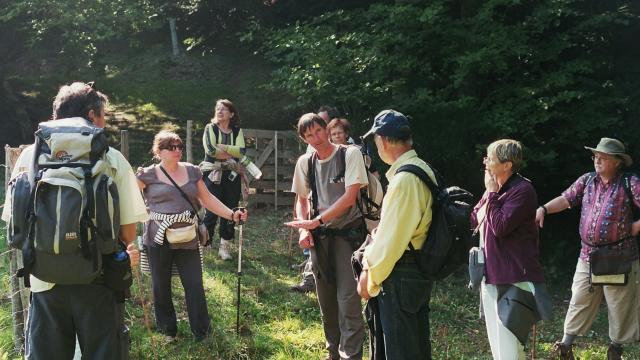 Benoit Courant, guide accompagnateur en montagne avec un groupe en forêt