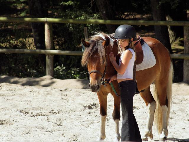 Equitation Cheval 2©phovoir