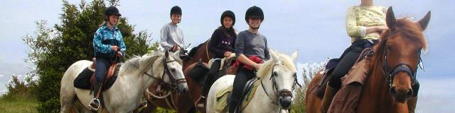 Equitation Cheval 3©oti.mende